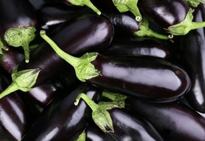 Ripe Eggplant for Sale