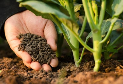 Types Of Organic Fertilizers Planet Natural