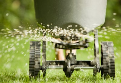 Spreading Lawn Fertilizer