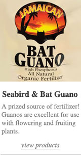 Seabird & Bat Guanos