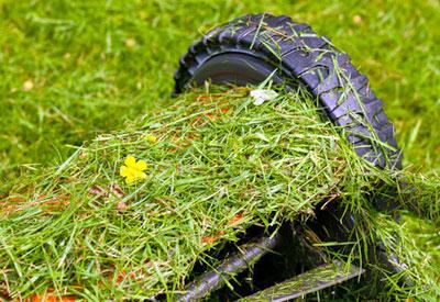 Reel Lawn Mowing