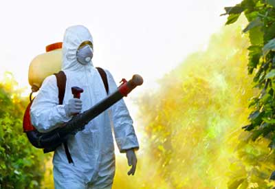 Pesticide Effect