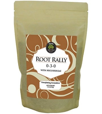 Age Old Root Rally
