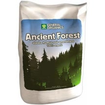 Ancient Forest Humus