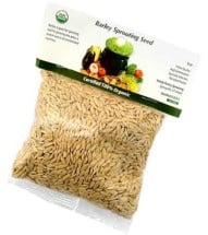 Barley GrassSprouting Seeds