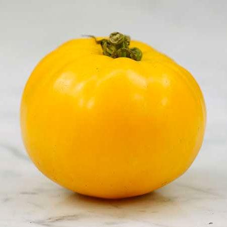 Tomato, Barnes Mountain
