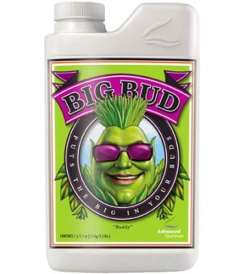 big-bud
