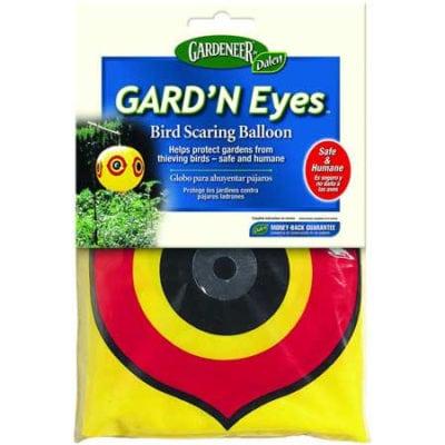 Guard 'n Eyes