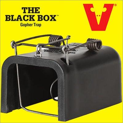 Black Box Gopher Trap