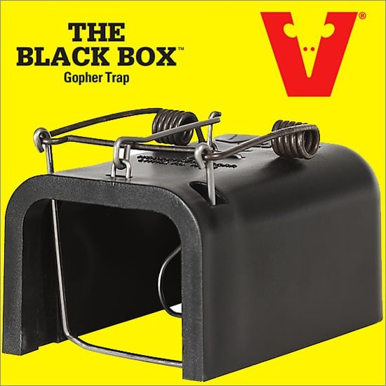 Black Box Gopher Trap By Victor