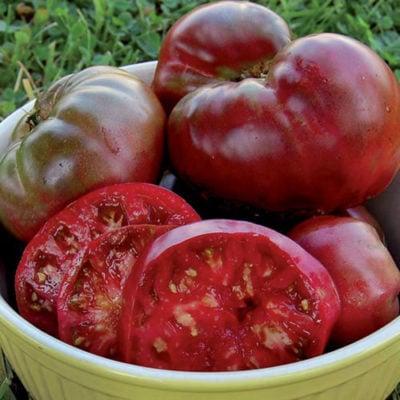 Tomato, Black Krim