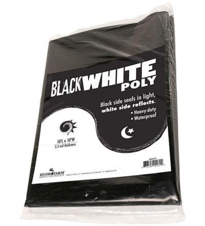 Black & White Poly