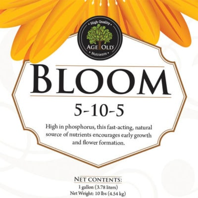 Age Old Bloom