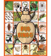 Bug Bingo Garden Game