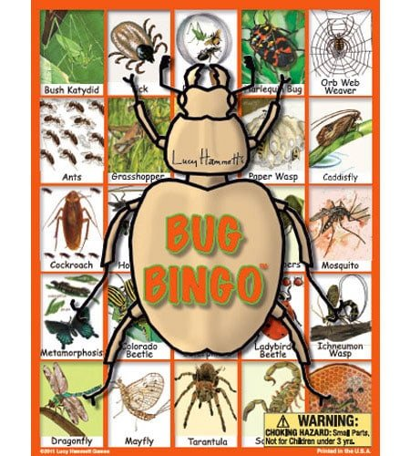 Bug Bingo Garden Game