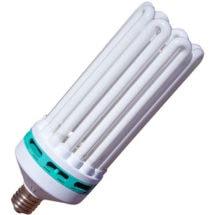 Compact Fluorescent Grow Bulb