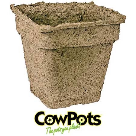 CowPots (Bulk) Starter Pots