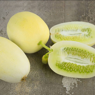 Cucumber, Dragon's Egg
