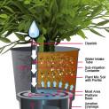 Eco Grower
