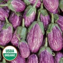 Eggplant, Listada de Gandia