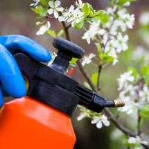 Sprayers & Applicators