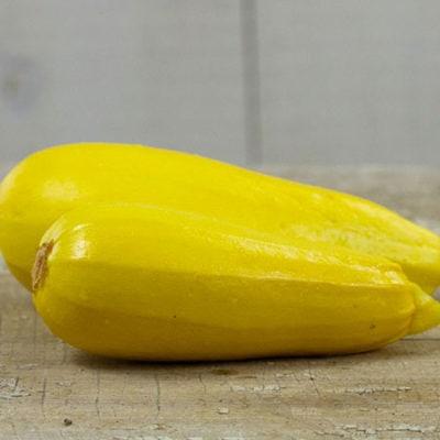 Squash, Golden Zucchini