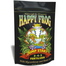 Happy Frog Jump Start