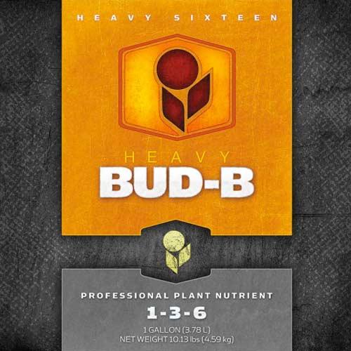 HEAVY 16 Bud B