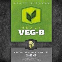 HEAVY 16 Veg B