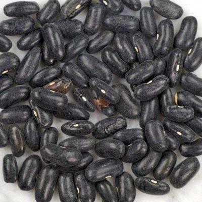 Henderson's Black Bean