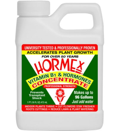 Hormex Rooting Concentrate