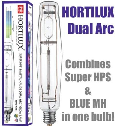 EYE HORTILUX Dual Arc Lamp