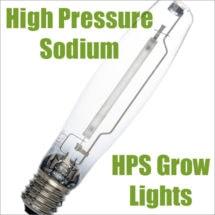 High Pressure Sodium Bulb