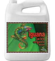 Organic Iguana Juice Bloom (OIM)