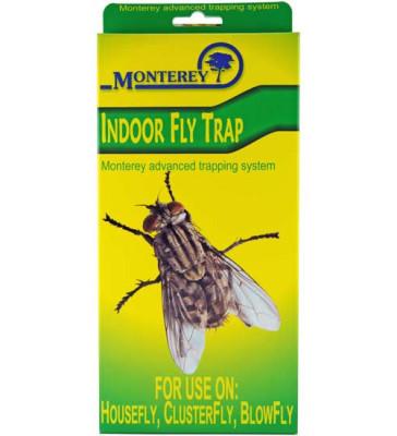 Indoor Fly Trap