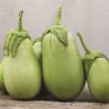Eggplant, Jade Sweet
