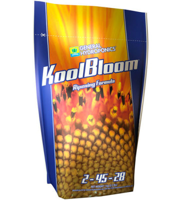 Kool Bloom