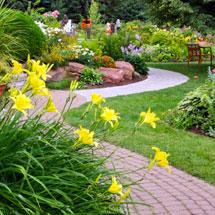 Lawns & Landscapes