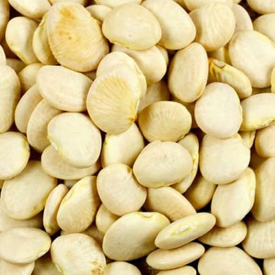 Lima Bean, Henderson's Bush