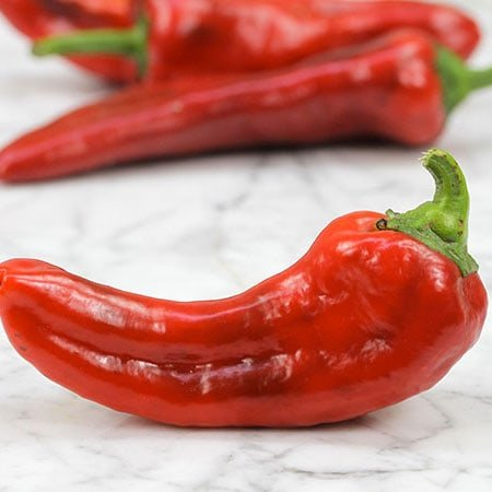 Pepper, Red Marconi