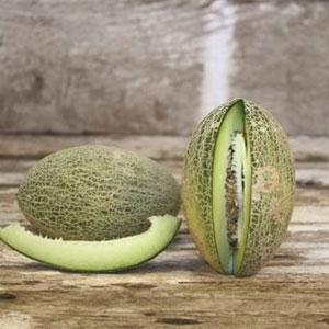 Melon, Afghan Honeydew