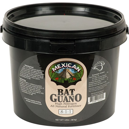 Mexican Bat Guano
