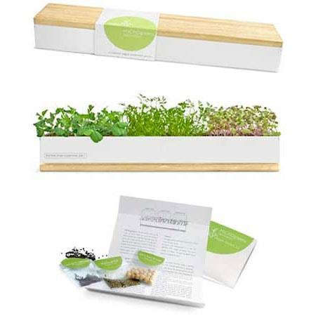 MICROgreens Windowsill Garden Box Planet Natural
