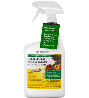 Mite Insect Control