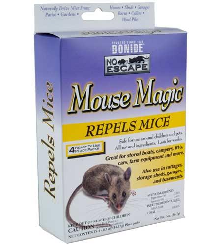 Mouse Magic