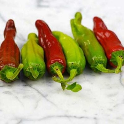 Pepperoncini pepper