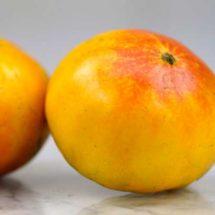 Tomato, Pineapple