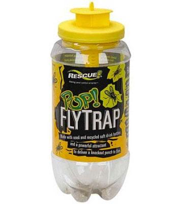 POP! Fly Trap