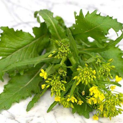Rapini Broccoli
