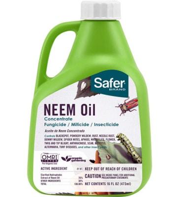 Neem Oil (BioNeem)